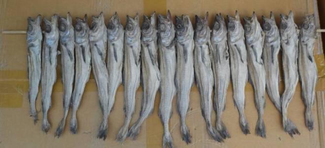 Как вялить рыбу в домашних условиях рецепт